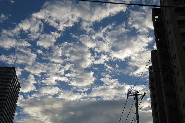 秋の空・秋の雲_01