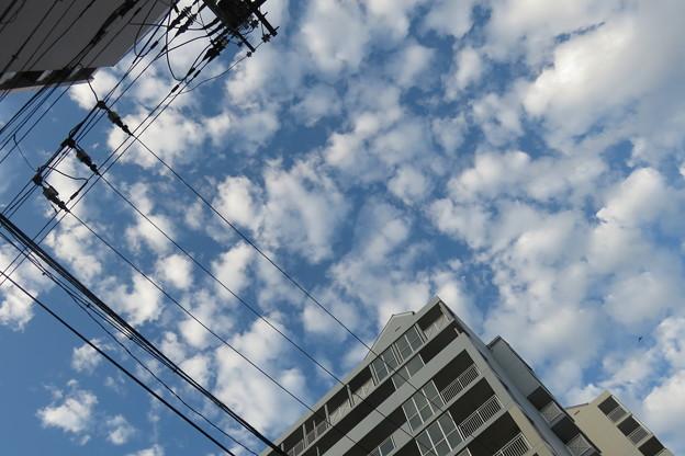 秋の空・秋の雲_03