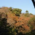 Photos: 香りの道 散策_02