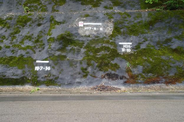 四万十川 洪水の跡