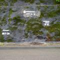 Photos: 四万十川 洪水の跡