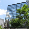 Photos: 朝日ホール 横の新緑_02