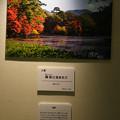 Photos: フォトコンテスト_入選3