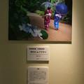 Photos: フォトコンテスト_森林植物園 名誉園長賞