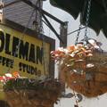 喫茶コールマン 鉢植え