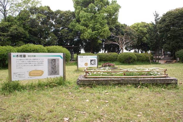 写真: 発掘旧墓_木棺墓