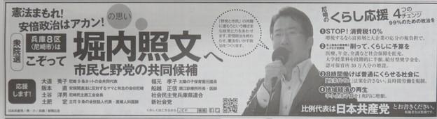 堀内照文候補の広告S