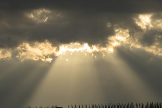 朝日の光芒_03
