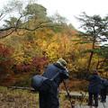 長谷池の紅葉を撮る