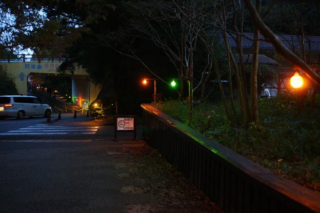 駐車場への道がライトアップ
