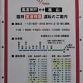 嵐山 秋の直通電車 休日