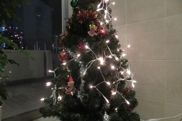 ポートビレッジ クリスマスツリー_01