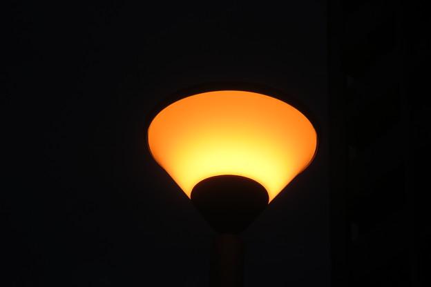 HAT神戸 暖かい色の街灯