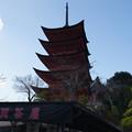 土産物街から五重塔