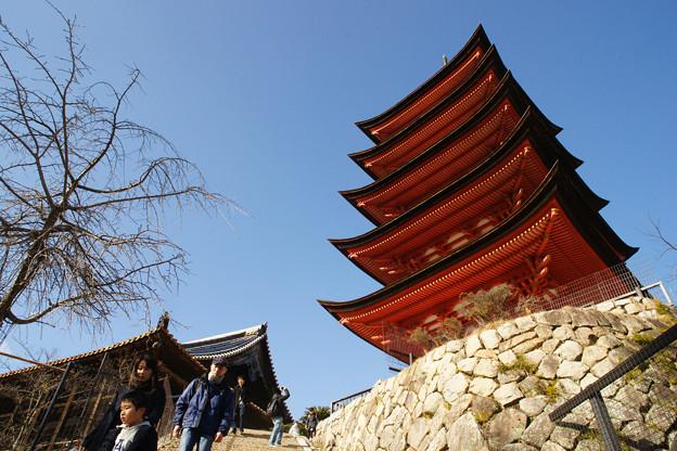 宮島 参道から五重塔