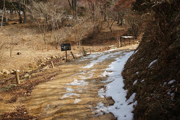 特別開園 雪の残る道_03