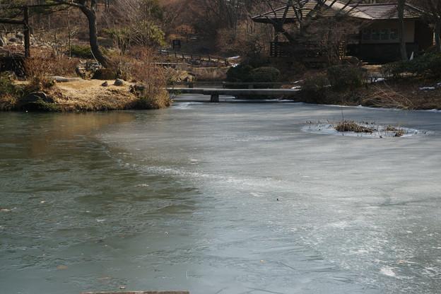 特別開園 氷の池