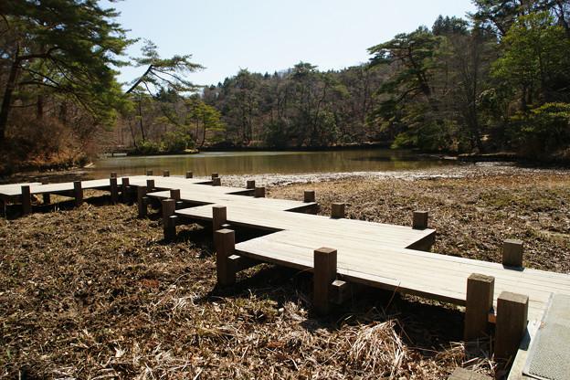 水の引いた長谷池