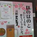 写真: 元町ヱビス 春ほのぼの_01