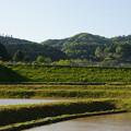 Photos: 吉備中央町 田園風景_03