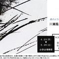 写真: 川瀬風子作品展案内