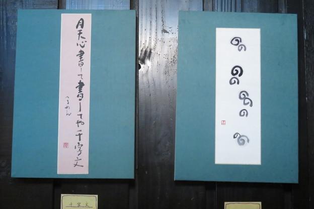 写真: 川瀬風子作品展_01