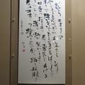 写真: 川瀬風子作品展_05
