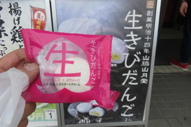瀬戸PA 生きびだんご_02