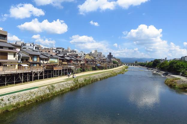 京都鴨川河畔