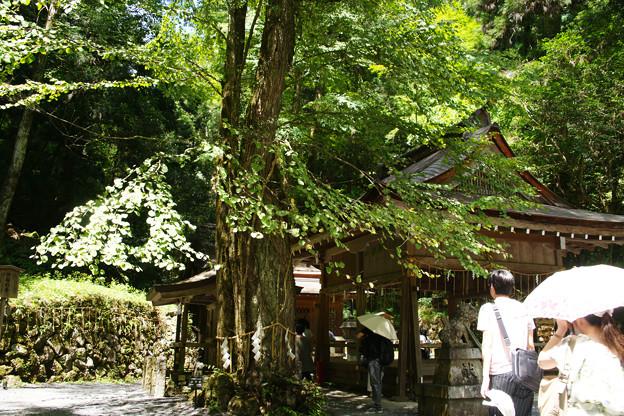 貴船神社 奥の宮 樹木に囲まれ