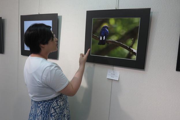 平和美術展 写真の交流会_09
