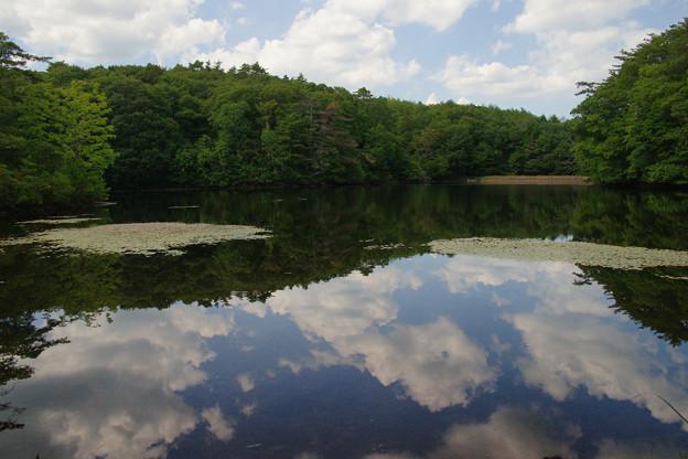 鯉が窪湿原 湖畔と青空_04