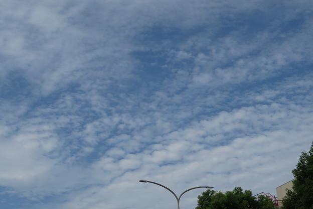 秋の雲_02