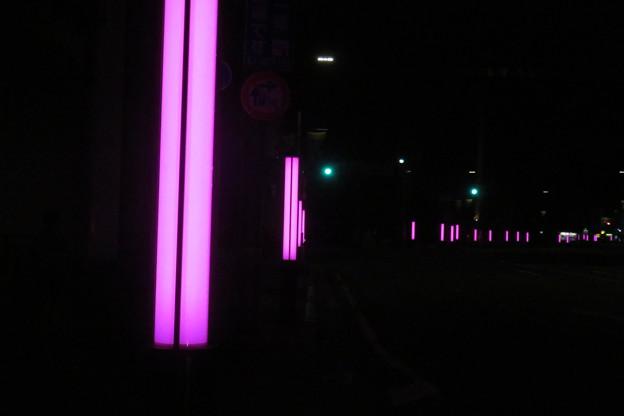 神戸税関前 光のポール_01