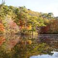 長谷池の紅葉_02