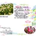2019年賀状_02