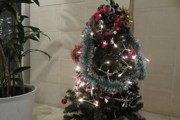 クリスマスツリー 電飾