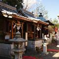Photos: 白崎八幡宮 各社お参り