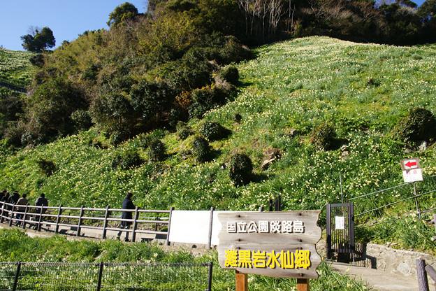 灘黒岩水仙郷 入口