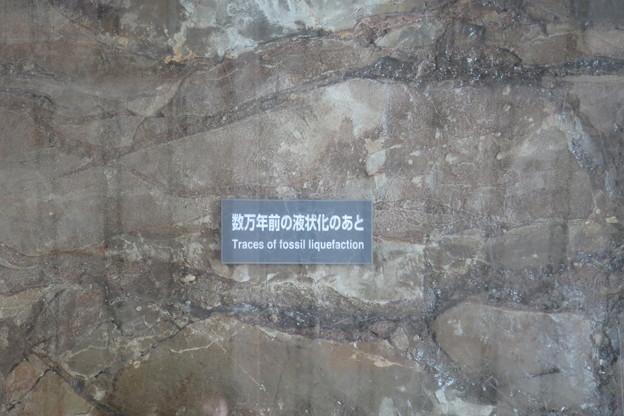 数万年前の液状化のあと