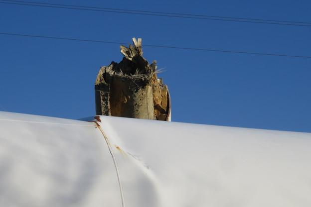 北淡町 倒れた風力発電の風車_03