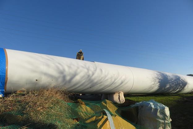 北淡町 倒れた風力発電の風車_04