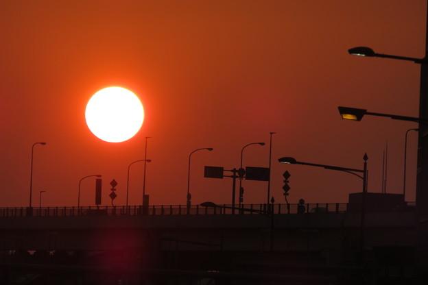 Photos: 大きな朝日_03