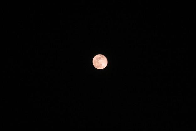 Photos: 月齢14・8の月_02