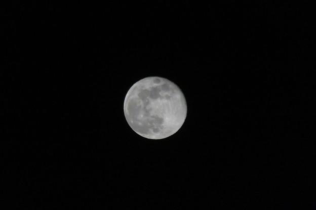 月齢14・8の月_04
