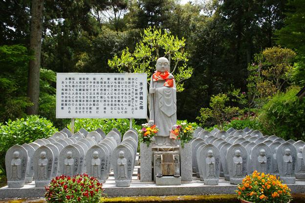 臨済寺 水子地蔵
