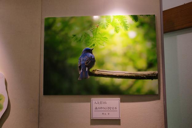 Photos: フォトコンテスト 人気賞3位