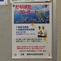 Photos: 七夕コンサート
