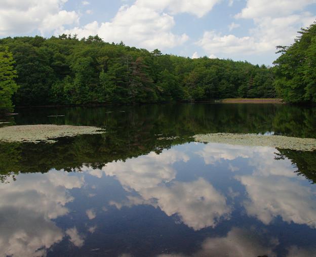 鯉が窪湿原 湖畔と青空