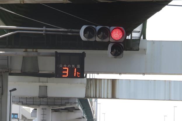真夏日31度